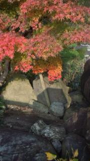 2011年の紅葉公園編